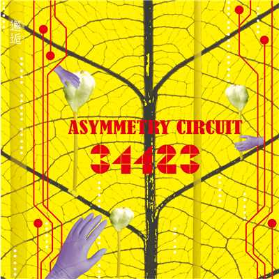 アルバム/Asymmetry Circuit/34423