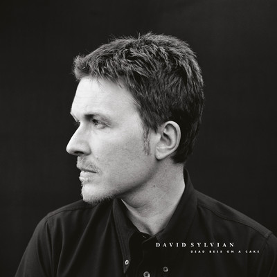 アルバム/Dead Bees On A Cake (Deluxe Edition)/David Sylvian