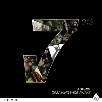 シングル/Dreaming Wide Awake (Original Instrumental)/Audrio