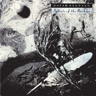 アルバム/Secrets Of The Beehive/David Sylvian