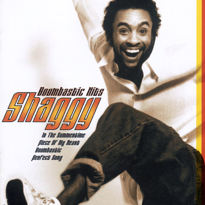 シングル/In The Summertime (Sting / Shaggy Remix)/Shaggy/Rayvon