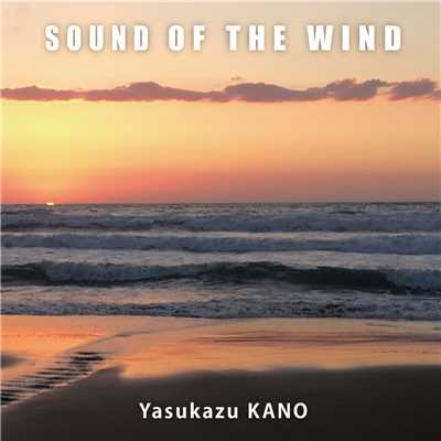 SOUND OF THE WIND <24bit/96kHz>/狩野泰一