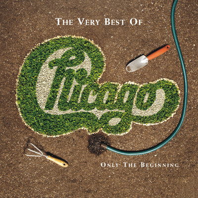 シングル/You're Not Alone (Album / Single Version)/Chicago