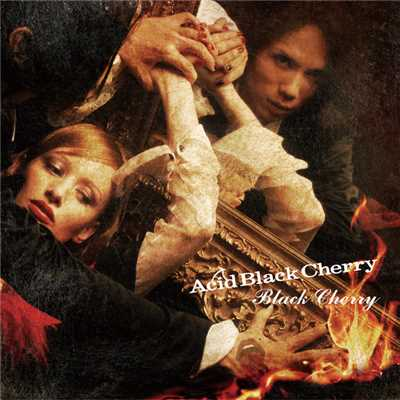 シングル/Black Cherry/Acid Black Cherry