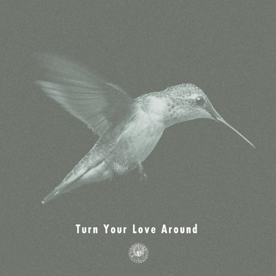 アルバム/Turn Your Love Around/AmPm