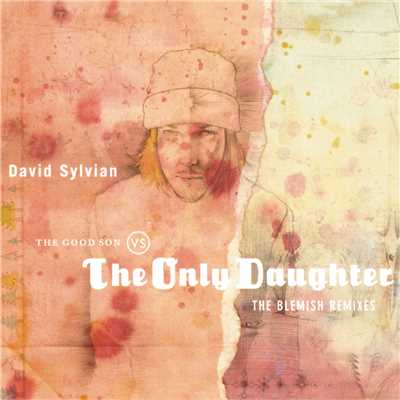 アルバム/The Good Son Vs. The Only Daughter - The Blemish Remixes/David Sylvian