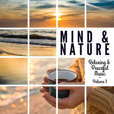 アルバム/Mind & Nature: Relaxing and Peaceful Music, Vol. 3/Various Artists