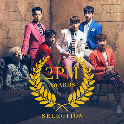 アルバム/2PM AWARDS SELECTION/2PM