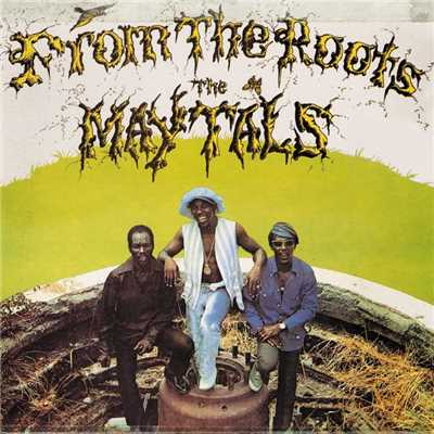 アルバム/From the Roots/The Maytals