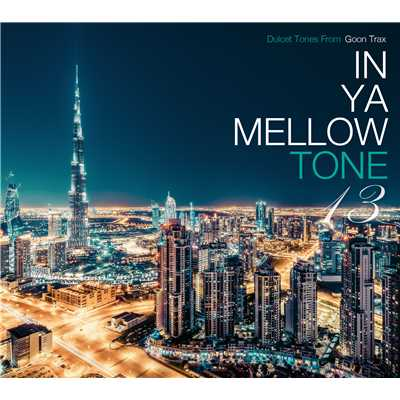 ハイレゾアルバム/IN YA MELLOW TONE 13/Various Artists
