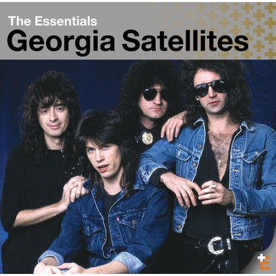 シングル/Don't Pass Me By/Georgia Satellites