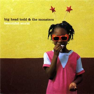 シングル/Resignation Superman/Big Head Todd and The Monsters