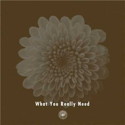 シングル/What You Really Need (feat. Miraa May)/AmPm