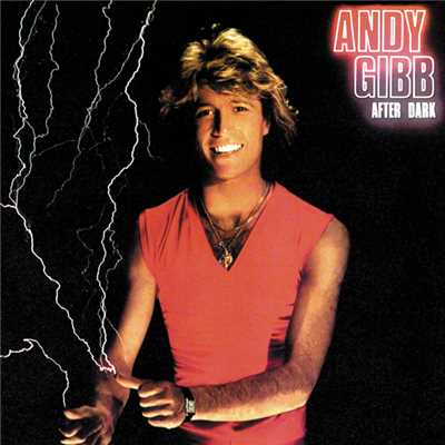 シングル/After Dark/Andy Gibb