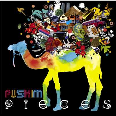 アルバム/Pieces/PUSHIM