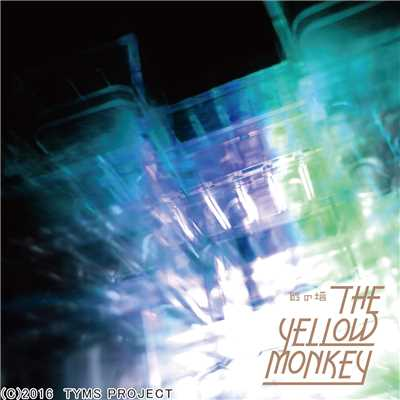 シングル/ALRIGHT/THE YELLOW MONKEY