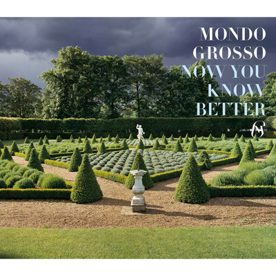 シングル/NOW YOU KNOW BETTER (Single Mix)/MONDO GROSSO