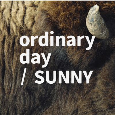 シングル/ordinary day/tacica