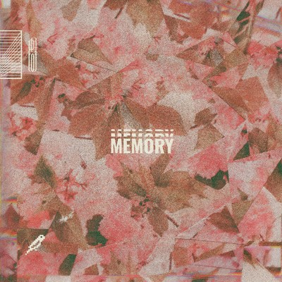 Memory/BlankFor.ms