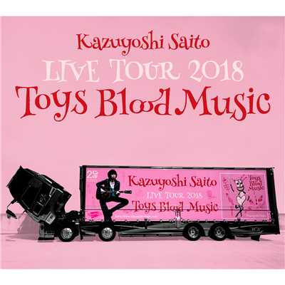 Kazuyoshi Saito LIVE TOUR 2018 Toys Blood Music Live at 山梨コラニー文化ホール 2018.06.02/斉藤 和義