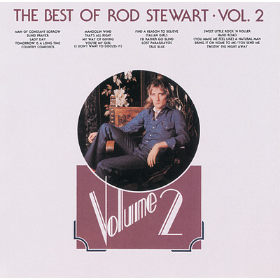 アルバム/The Best Of Rod Stewart (Vol.2)/Rod Stewart