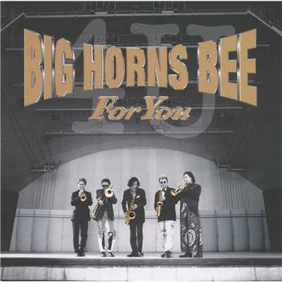 シングル/DIG  THIS/BIG HORNS BEE