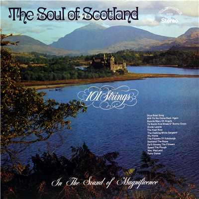アルバム/The Soul of Scotland (Remastered from the Original Master Tapes)/101 Strings Orchestra