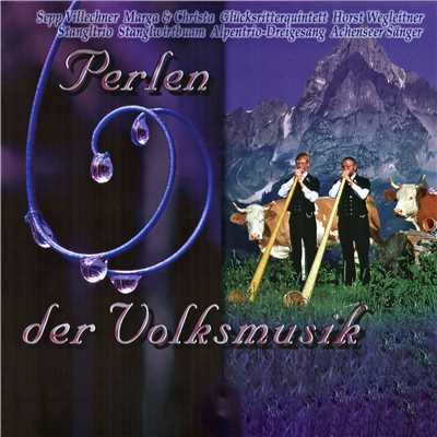 アルバム/Perlen der Volksmusik/Various Artists