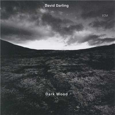 シングル/New Morning (Darkwood VII)/David Darling