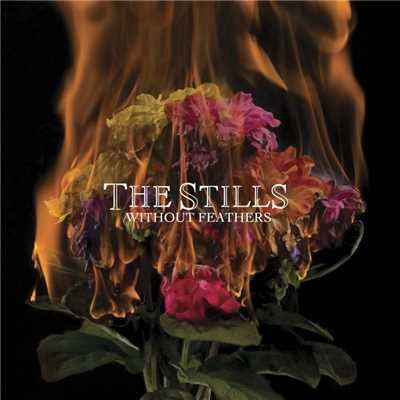 シングル/The House We Live In/The Stills