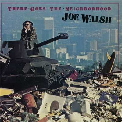 シングル/A Life Of Illusion/Joe Walsh