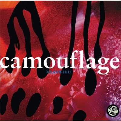 シングル/Who The Hell Is David Butler?/Camouflage
