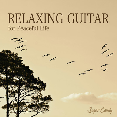 アルバム/Relax Guitar Cafe/RELAX WORLD