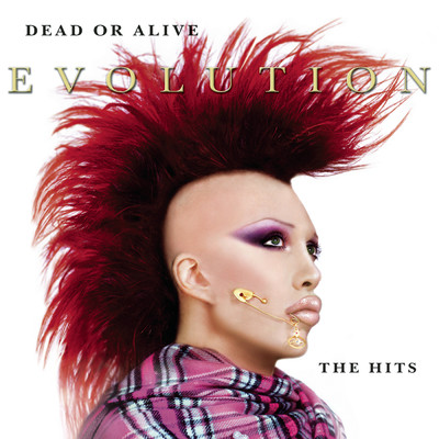 アルバム/Evolution: The Hits/Dead Or Alive