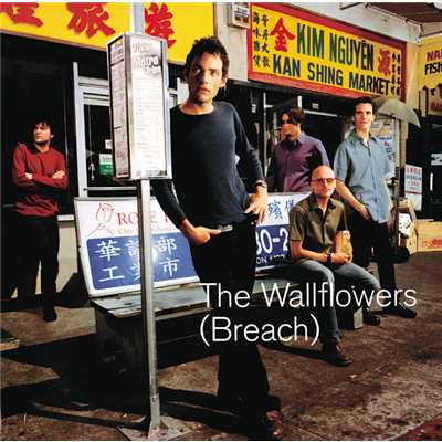 アルバム/Breach/The Wallflowers