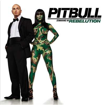 シングル/Shut It Down/Pitbull feat. Akon