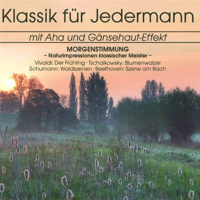 アルバム/Klassik fur Jedermann: Morgenstimmung/Various Artists