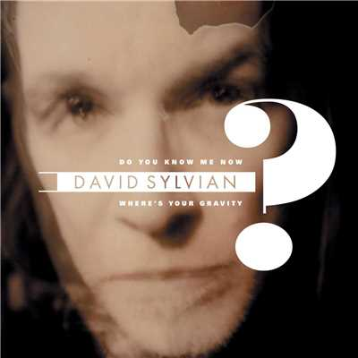 アルバム/Do You Know Me Now?/David Sylvian