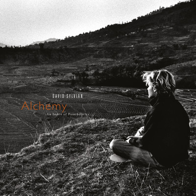 アルバム/Alchemy: An Index Of Possibilities (Remastered 2003)/David Sylvian