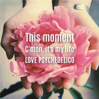 アルバム/This moment/C'mon, it's my life/LOVE PSYCHEDELICO