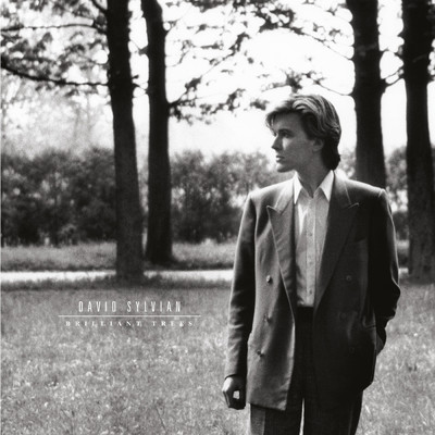 Weathered Wall/David Sylvian