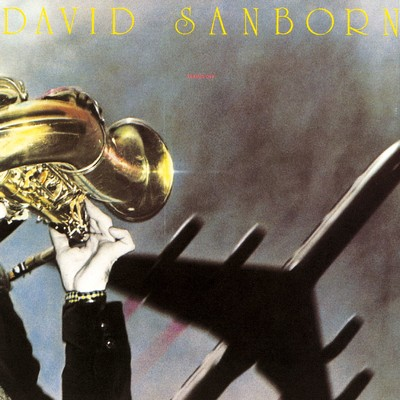 シングル/Butterfat/David Sanborn