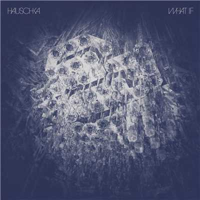 ハイレゾ/Knowledge Is Passed On (Bonus track)/Hauschka