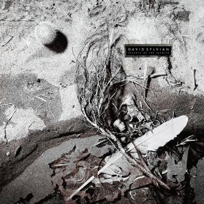 アルバム/Secrets Of The Beehive (Remastered 2003)/David Sylvian