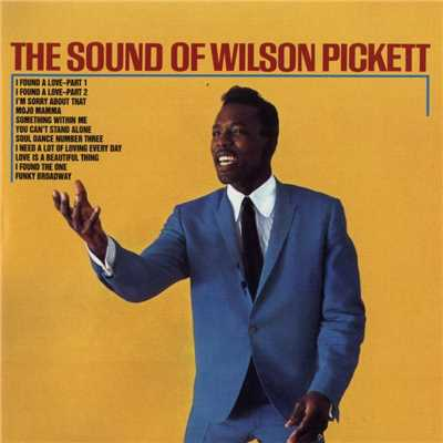 アルバム/The Sound of Wilson Pickett/Wilson Pickett