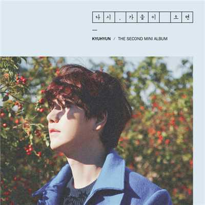 アルバム/Fall, Once again - The 2nd Mini Album/KYUHYUN