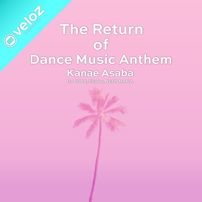 The Return Of Dance Music Anthem/Various Artists