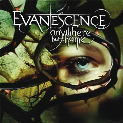 アルバム/Anywhere But Home (Live)/Evanescence