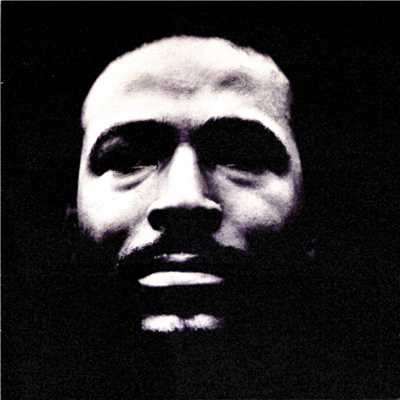 アルバム/Vulnerable/Marvin Gaye