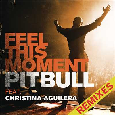 アルバム/Feel This Moment Remixes feat.Christina Aguilera/Pitbull